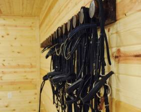 tack room and lounge